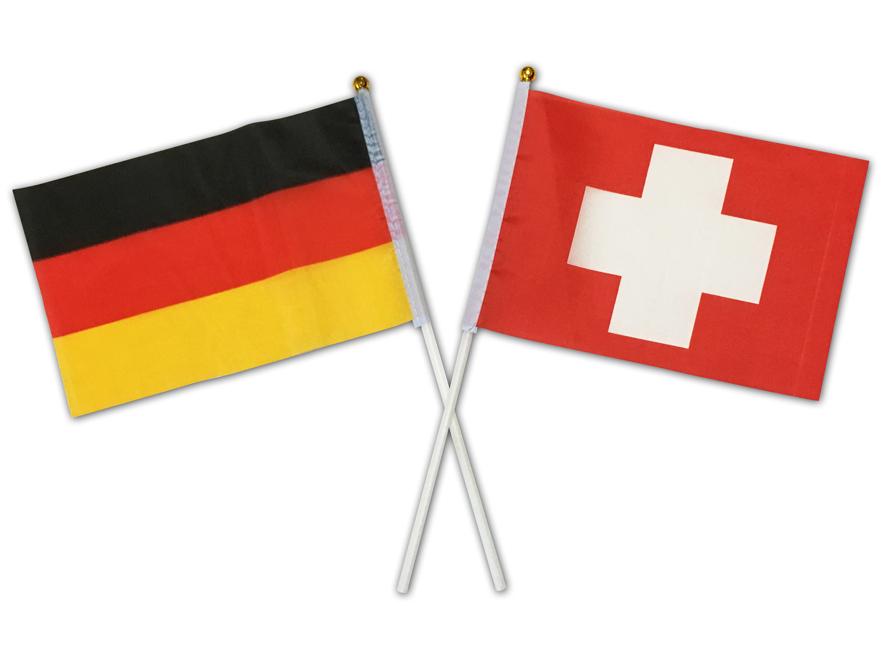 東京2020大会ドイツ、スイスのボート代表チーム受入れ応援国旗